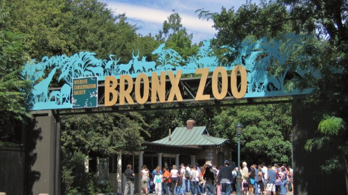 The Bronx Zoo entrance where people are queuing for entry