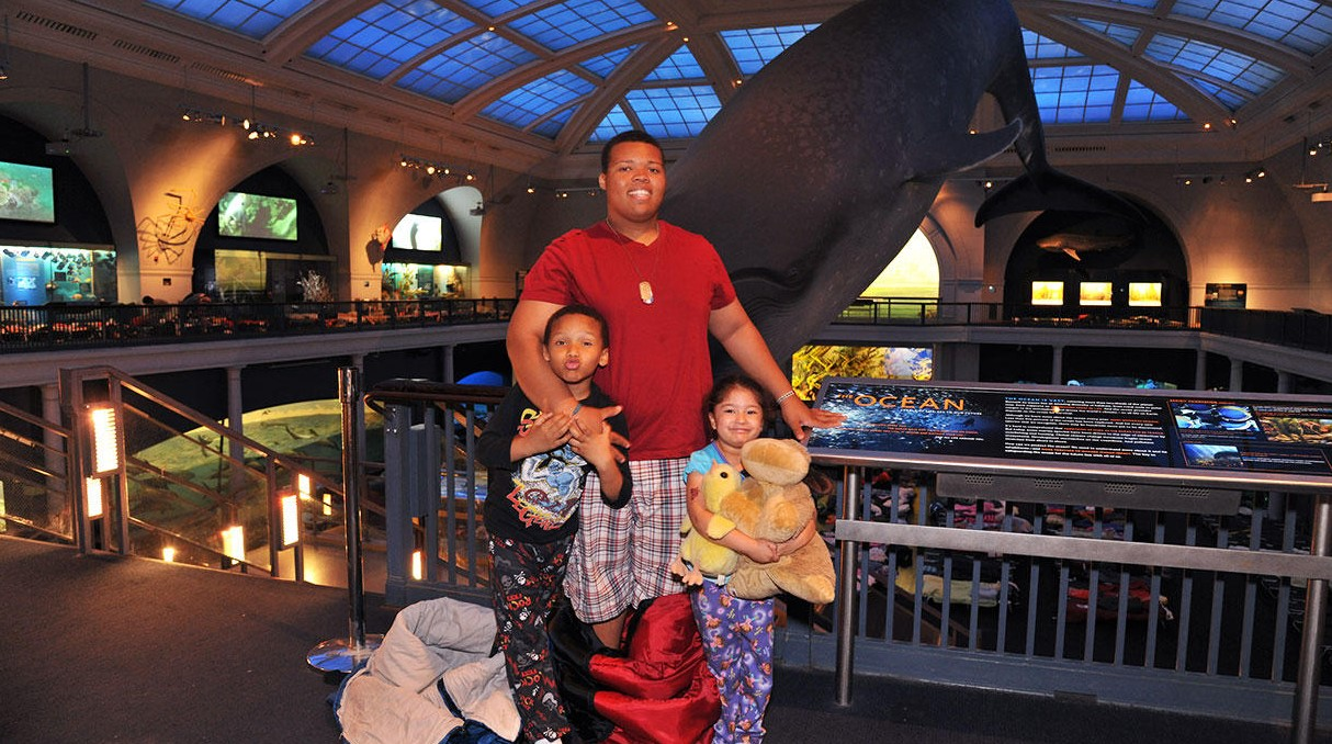visitors to the american museum of natural science stand in front of whale with sleeping covers