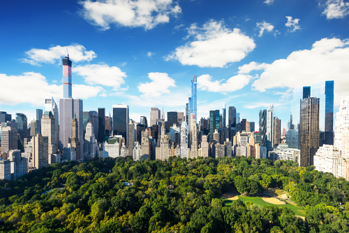 Central park view to manhattan with park at sunny day - amazing birds view