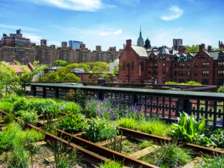 HIgh Line. Urban public park on an historic freight rail line, New York