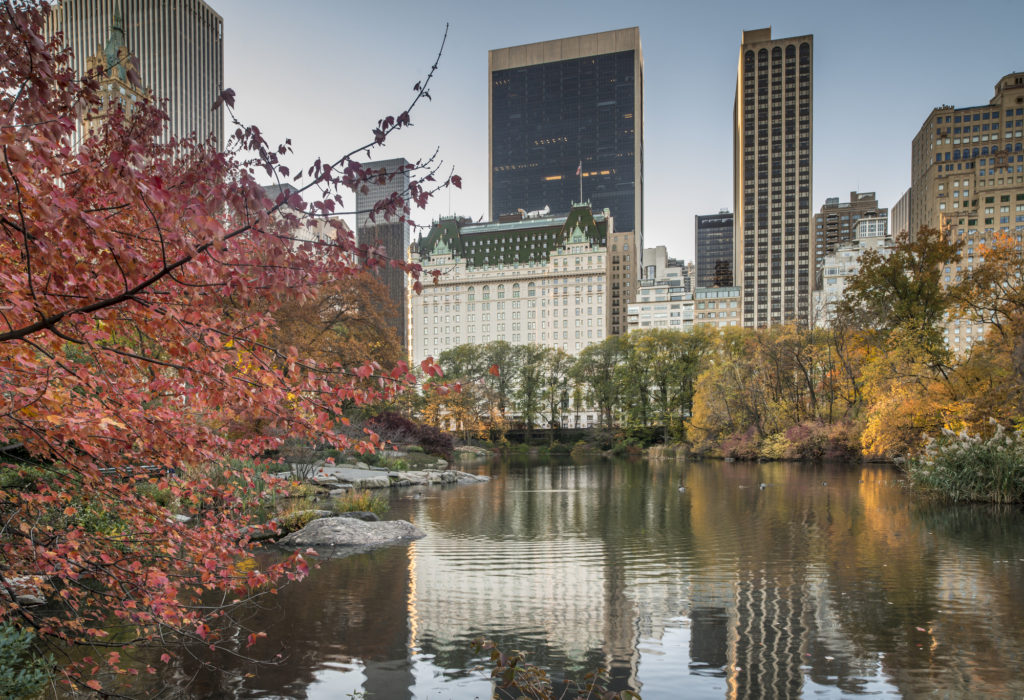 the Hotel Plaza Athenee, one of New York's 5 star hotels, viewed from the pond in central park