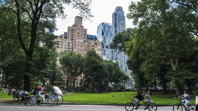 cyclists riding through the beautiful central park - central park bike rental